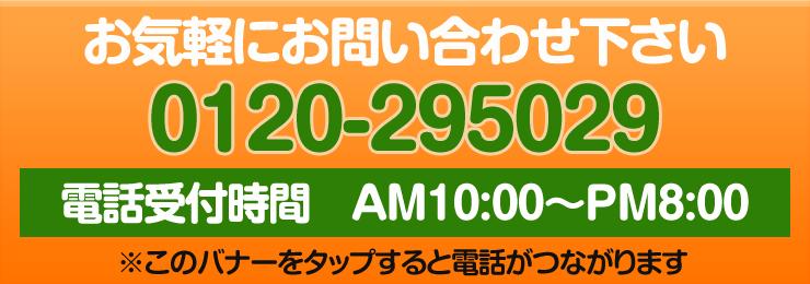 電話番号 0120295029